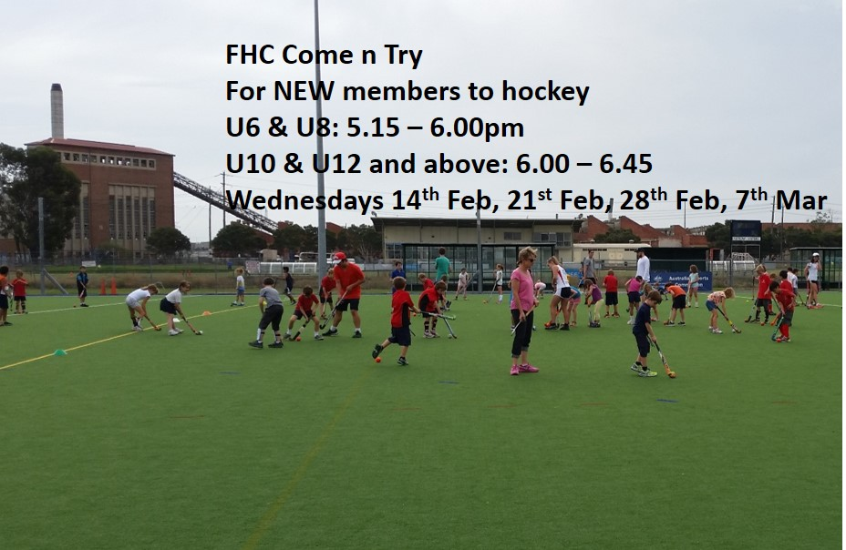 FREE COME N TRY HOCKEY CLINICS