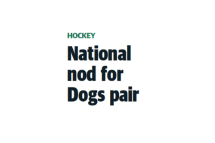 MARIBYRNONG LEADER: NATIONAL NOD FOR DOGS PAIR