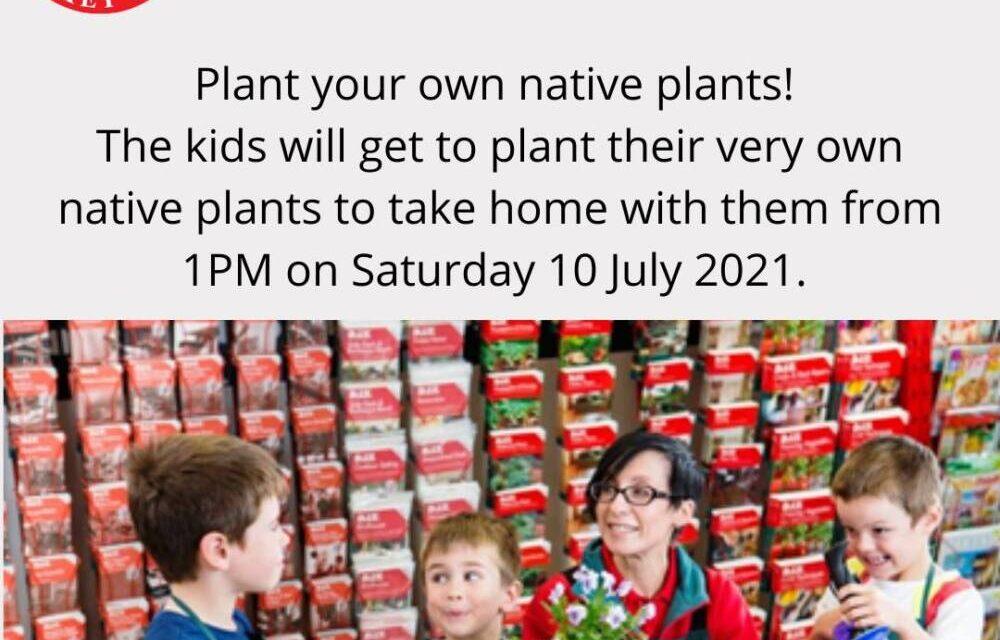 NAIDOC WEEK @ FHC – Native Planting